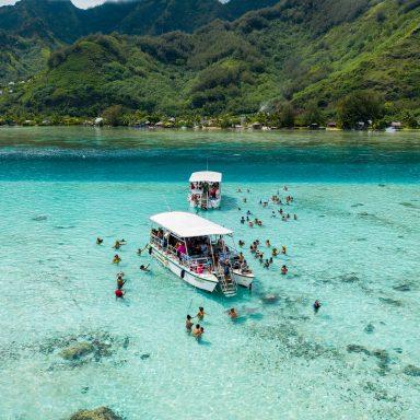 Ma'a Tahiti on The Motu 003
