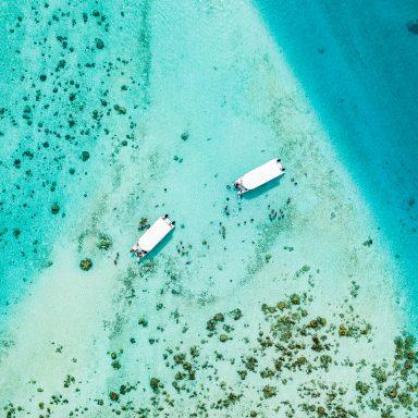 Ma'a Tahiti on The Motu 004