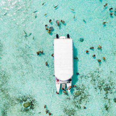 Ma'a Tahiti on The Motu 005