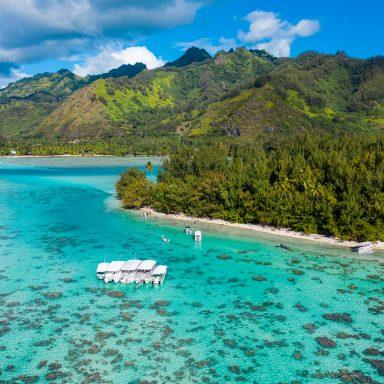 Ma'a Tahiti on The Motu 012