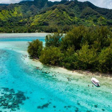 Ma'a Tahiti on The Motu 017